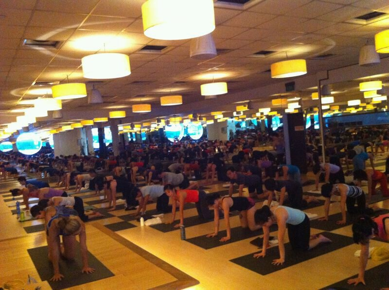 Ashtanga Mysore Workshop 2012