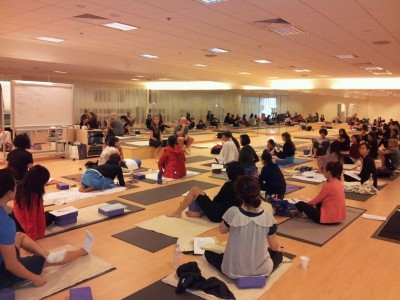 Yin Yoga Anatomy Training